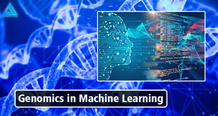 Feonomics in Machine laerning